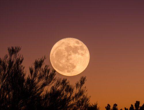 Νέα Σελήνη Σεπτέμβρη: Σε ποιον τομέα ζωής των 12 ζωδίων δίνεται μια νέα ευκαιρία;
