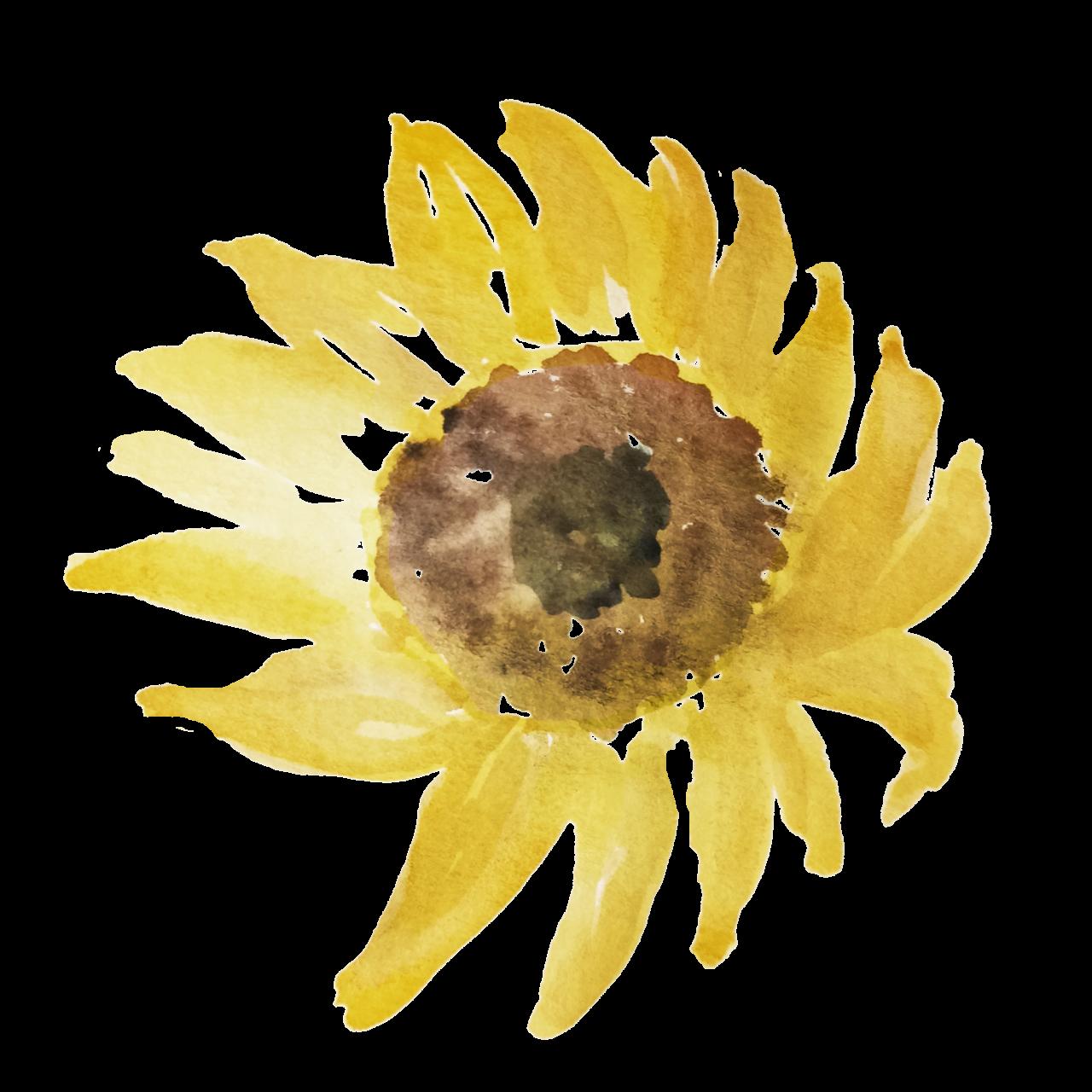 https://marigiova.gr/wp-content/uploads/2021/08/IanMikraz-Watercolor-Sunflower-01-1280x1280.png